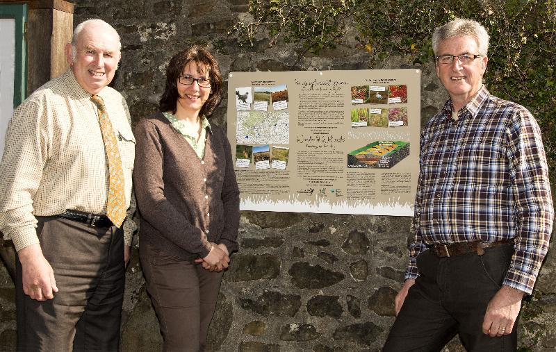 Llanfynydd Bog project