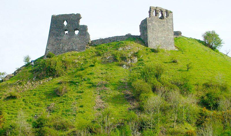 dryslwn castle