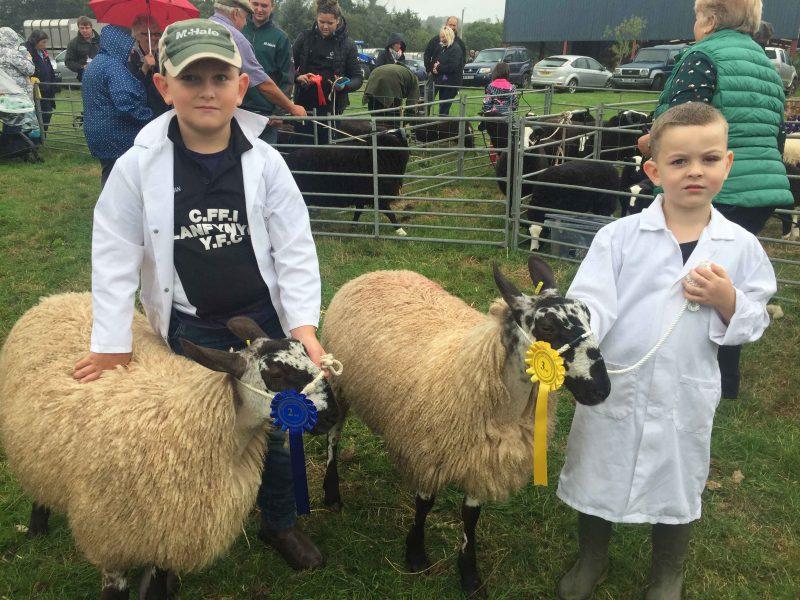 Ifan and Gruff Humphreys enjoying a successful day at the 2018 Llanfynydd Show
